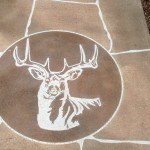 Visions N Crete decorative concrete flagstone deer